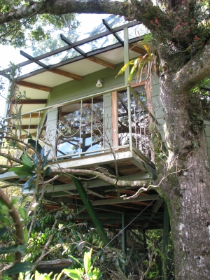 & Hidden Canopy Treehouses Boutique Hotel